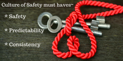 Culture of Safety must haves_.png